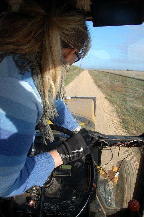 Harvest 2012 3